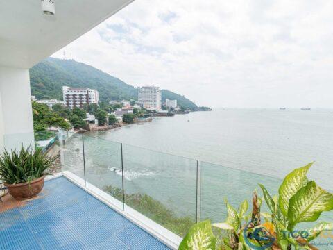 Ảnh đại diện Villa Blue Sapphire Resort Vũng Tàu - TICO 22 - P21